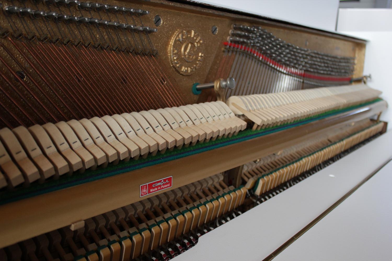 Legnica Klavier