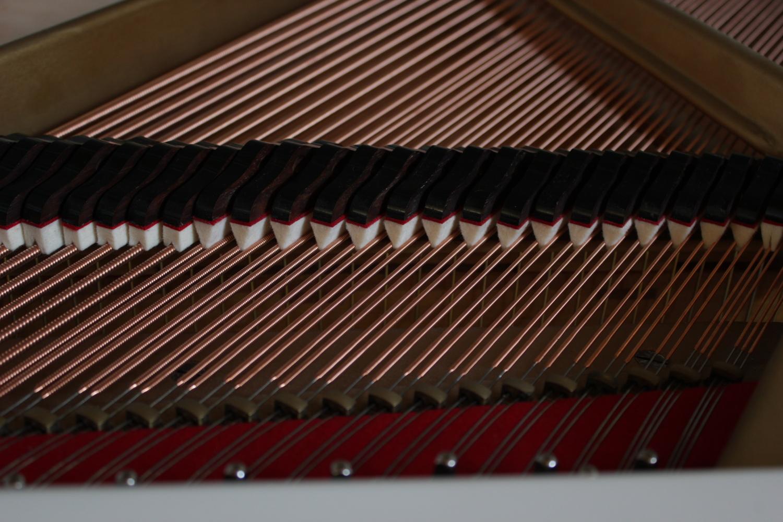 Ed. Seiler, Mod. Glockenflügel 145 Flügel